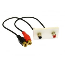 Faceplate Module with Black/Red RCA Stubs