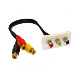 Faceplate Module with Black/Red/Yellow RCA Stubs